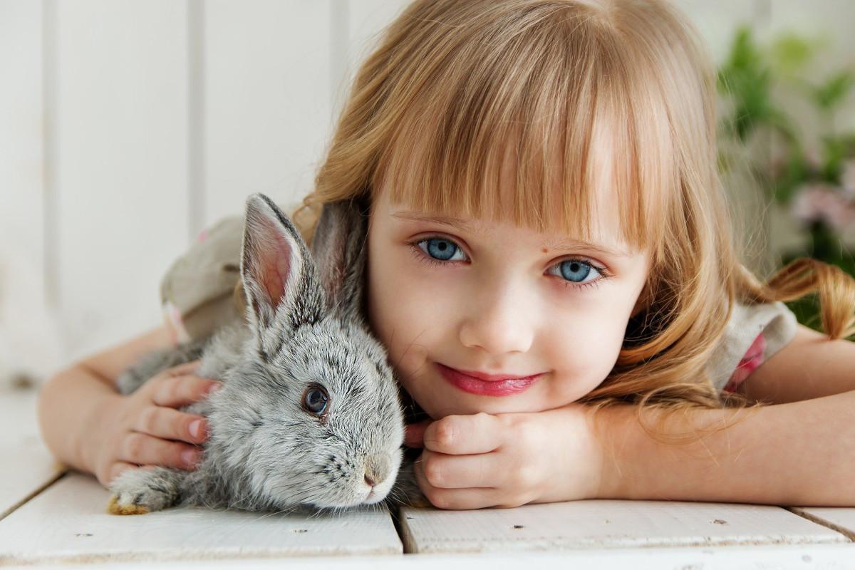 ingrijirea iepurilor